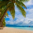 Stock Photo: Tropical island - sea, sky and palm trees