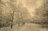 Grunge image of winter landscape — Stock Photo