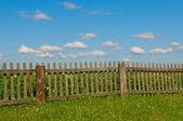 Cielo blu, erba verde e recinzione — Foto Stock