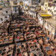 Tannery in Fez, Morocco — Stock Photo #30865731