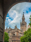 Seville Cathedral and Giralda bell tower, Spain — Stock Photo