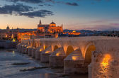 Mezquita cathedral and roman bridge, Cordoba, Spain — Stock Photo