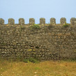 Old castle wall — Stock Photo
