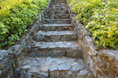 Steps in eastern garden — Stock Photo