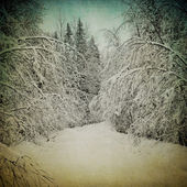 Grunge image of winter landscape — Stockfoto