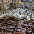 Tannery in Fez, Morocco — Stock Photo #32491751