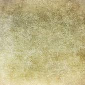 Grunge květinové pozadí s prostorem pro text nebo obrázek — Stock fotografie