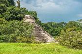 Ruïnes van palenque — Stockfoto