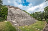 The great pyramid in Uxmal, Yucatan, Mexico — Stock Photo