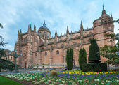New cathedral (Catedral Nueva) in Salamanca, Spain — Stock Photo