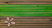 Color wooden levels — Stock Photo