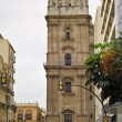 Malaga Cathedral, Andalusia, Spain — Stock Photo