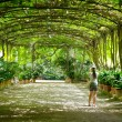 Stock Photo: Botanical gardens