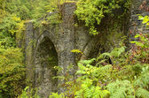 Ancient bridge encased in foliage on the Isle of Bute in Scotland — Stock Photo