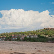 Tree against the sky — Stock Photo #13620291