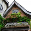 Timbered houses — Stock Photo #29001121