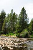 South fork san soaquin river Kalifornie — Stock fotografie
