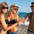 Happy young group of friends making a toast on beach. — Stock Photo