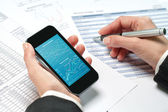 Female hands reviewing accounting on smart phone. — Stock Photo