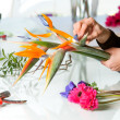 Female hands arranging bouquet. - Stok fotoğraf