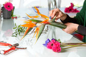 Female hands arranging bouquet. — Stock Photo