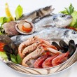 Fresh seafood. — Stockfoto