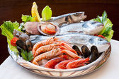 Appetizing seafood platter. — Stock Photo