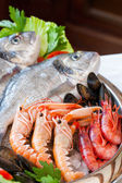 Close up detail of raw seafood platter. — Stock Photo