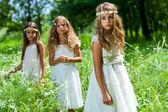 Three girls wearing white dresses in woods. — Stock Photo