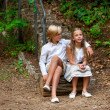 Stock Photo: Boy and girl sitting on log in woods.