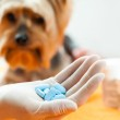 Vet with dog pills. — Stock Photo #48686185