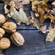 Walnuts — Stock Photo #14332749