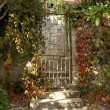 Closed metal gate on old sandstone wall with autumn red vine in - Stock Photo