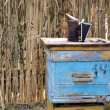 Old fashioned weathered blue wooden bee hive with bee-keeper too — Stock fotografie