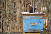 Old fashioned weathered blue wooden bee hive with bee-keeper too — Stock Photo