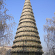 Krasnoyarsk City Christmas Tree — 图库照片 #18457749