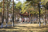 The city of Heihe (China). Pavilion in the Longbin park — Stock Photo