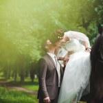 recién casados — Foto de Stock