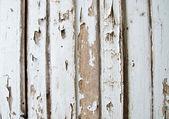 Old wood background — Foto de Stock