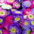 Stock Photo: Beautiful flower bouquet at farm market