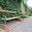 Wooden bench in park — Stock Photo #14886253