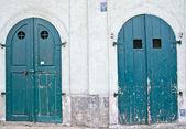 две зеленые двери — Стоковое фото