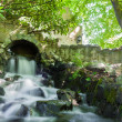 Cascade falls over mossy rocks — Stock Photo