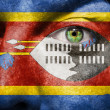 Flag painted on face with green eye to show Swaziland support — Stock Photo