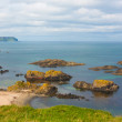 Volcanic rock formations in Ballintoy Bay — Stock Photo