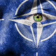 Royalty-Free Stock Photo: Flag painted on face with green eye to show NATO support
