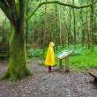 Hiker in forest wearing  raincoat and boots — Stock Photo