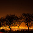 Silhouette of trees against Dublin city lights — Stock Photo