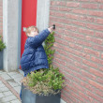Маленький мальчик звеня колокол дверь — Стоковое фото