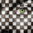 Checkered face — Stock Photo